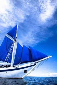 Sail Indonesia