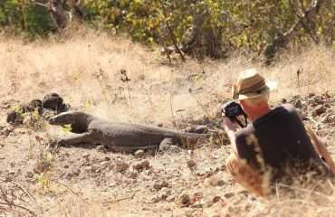 Komodo Locals