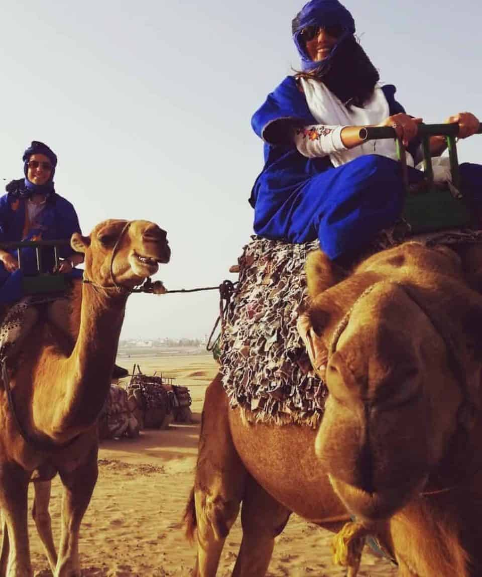 Camels... Of Course