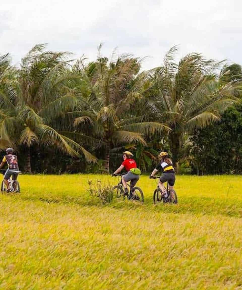 A Cycling Adventure