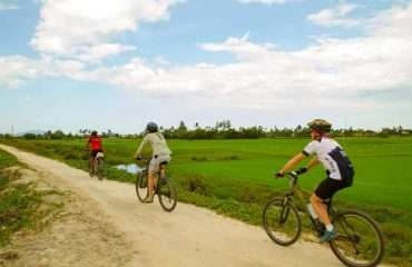 Ride by Ricefields