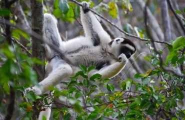 Hike Madagascar