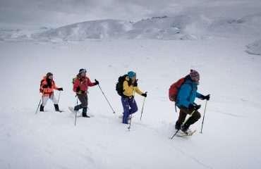 Explore East Greenland