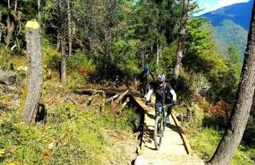 Great Single Trail